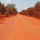 Road to Willie Creek, Western Australia by Adrian Paul