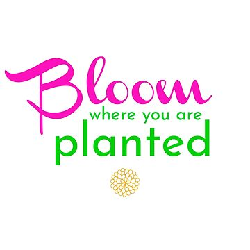 Bloom where you are planted by littlemamajama