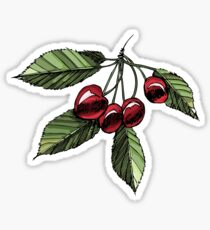 Hand drawn colored sketch cherries with leaves Sticker