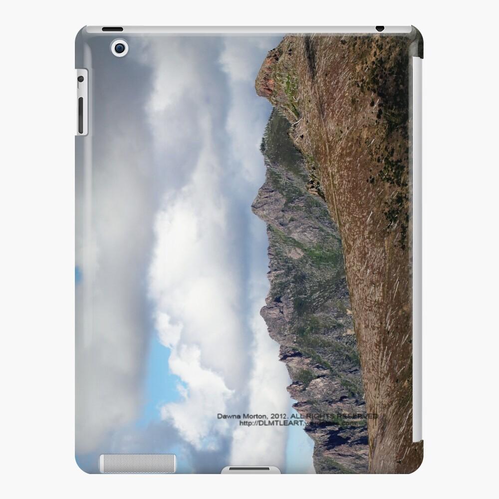 Dead tree devastation near Johnston's Ridge iPad Case & Skin