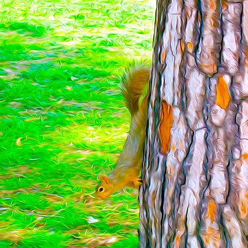Squirrel on Tree by dm-photography