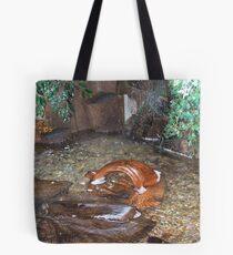 Plantpot Tote Bag