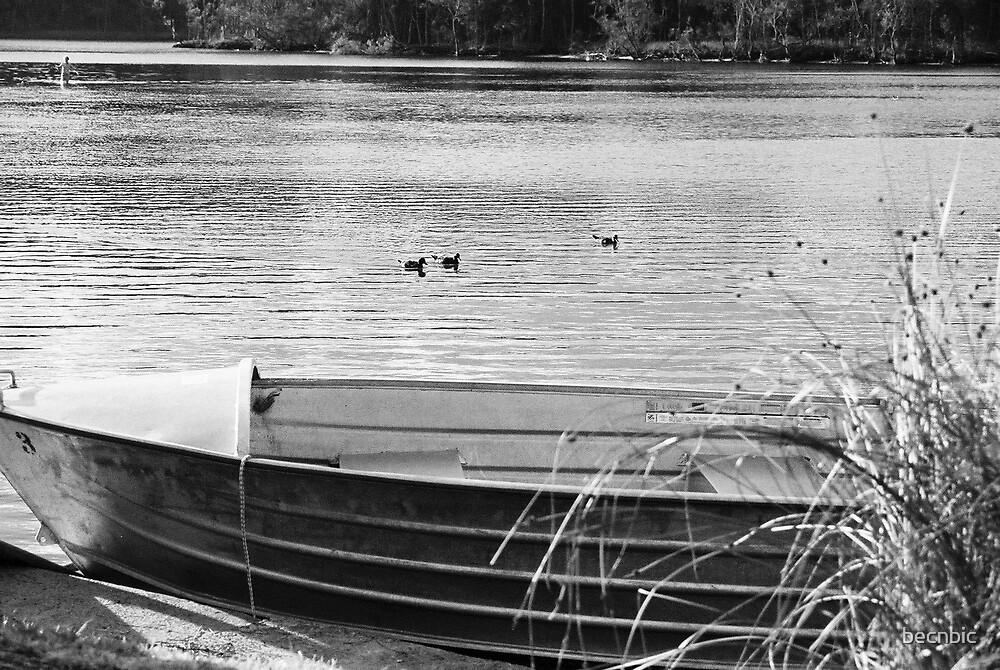 serenity at Lake Conjola by becnbic