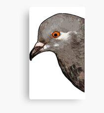 Brian the Pigeon Canvas Print