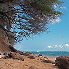 Millionaire Beach by Bradley Old