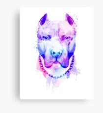Pit bull Watercolor, Pit bull Artistic, Pit bull Colorful Canvas Print
