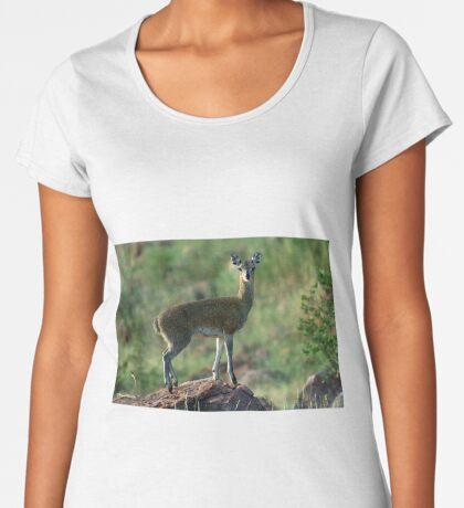 THE BALLERINA - *KLIPSPRINGER – Oreotragus oreotragus* Women's Premium T-Shirt
