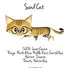 Sand Cat by rohanchak