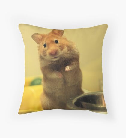 Feed Minnie Throw Pillow