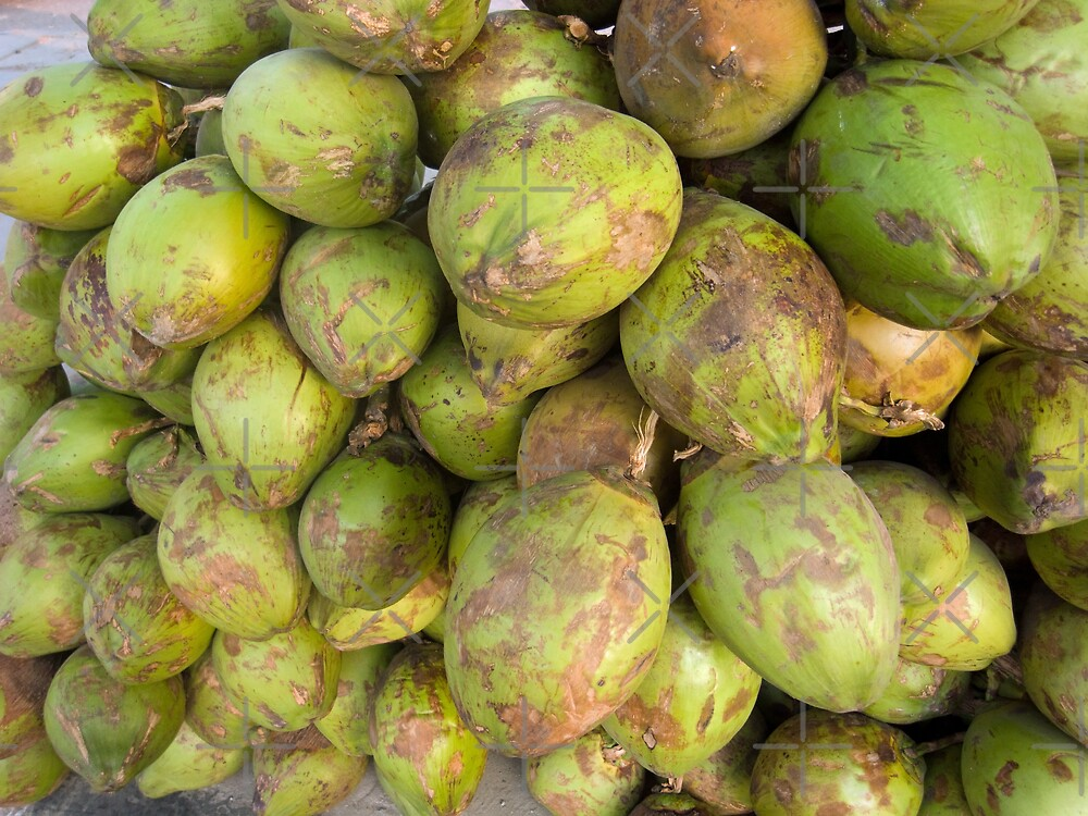 Cross section of a number of tender fresh coconuts by ashishagarwal74
