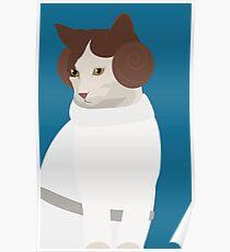 Princess Catwalker Poster