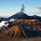 MT. BROMO PANORAMA - EAST JAVA  by Michael Sheridan