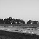 Pacific Ocean from Rialto Beach, Washington by Adam Nixon