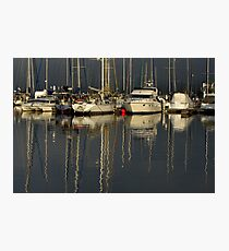 yachts Photographic Print