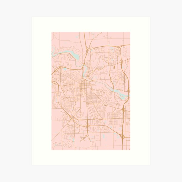 Pink and gold Ann Arbor map Art Print