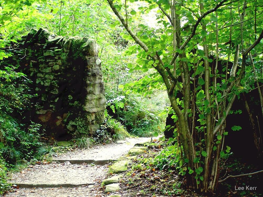 The Hidden Gate. by Lee Kerr