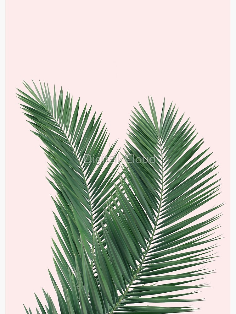 Palm leaves, tropical leaves pink background by nth4ka