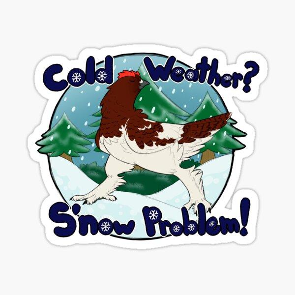 S'now problem Sticker
