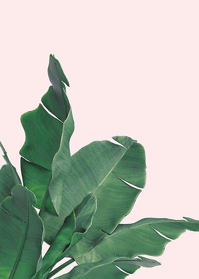 Tropisches Blatt der Bananenblätter von Natalie Digital Cloud