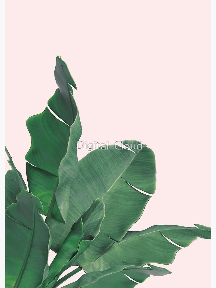 Banana leaves tropical leaf by nth4ka