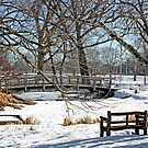 Snowy Bridge by Donna R. Cole