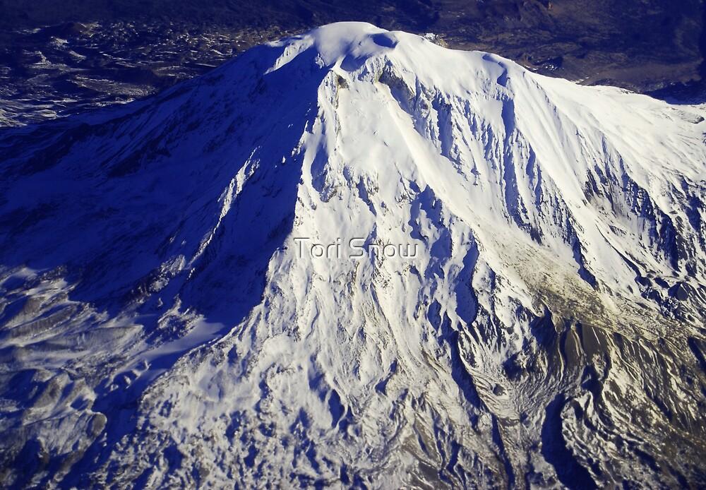 Mount Adams by Tori Snow