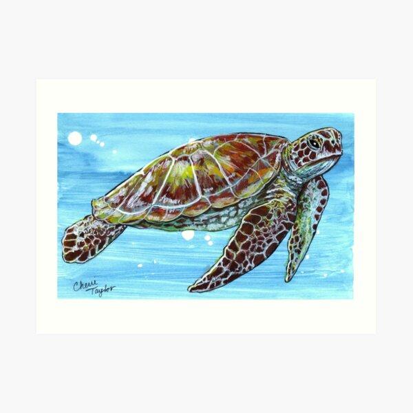 Turtle Print Art Print