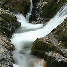 Group Of Falls On The Calapooia River 3 by CarrieAnn