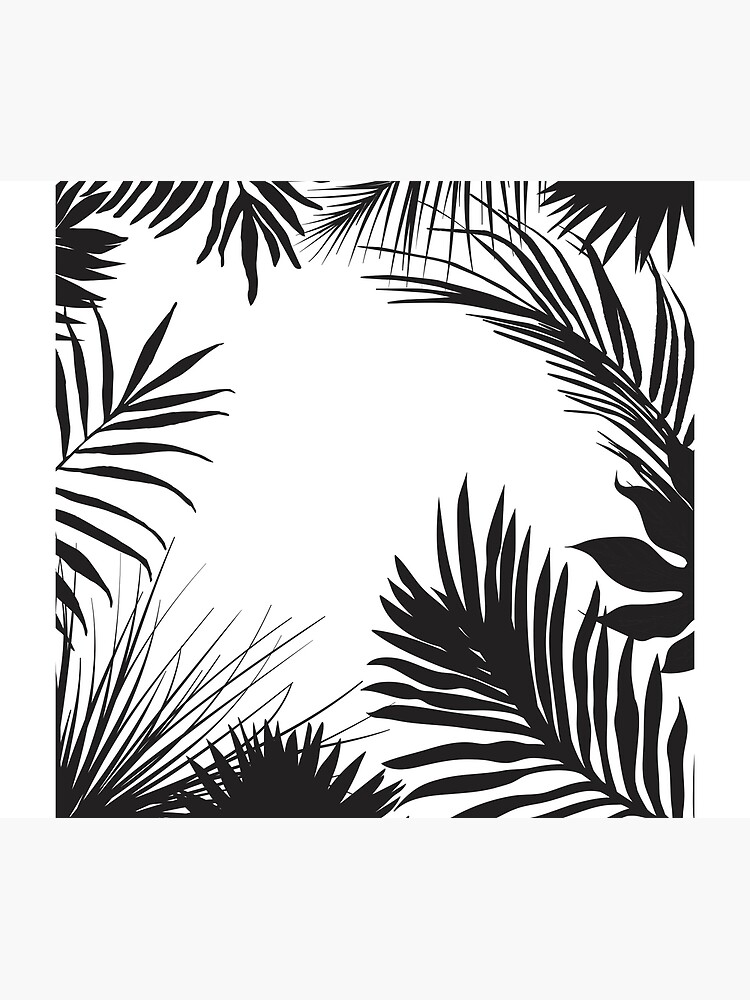 Palm Leaves In Black And White by artsandsoul