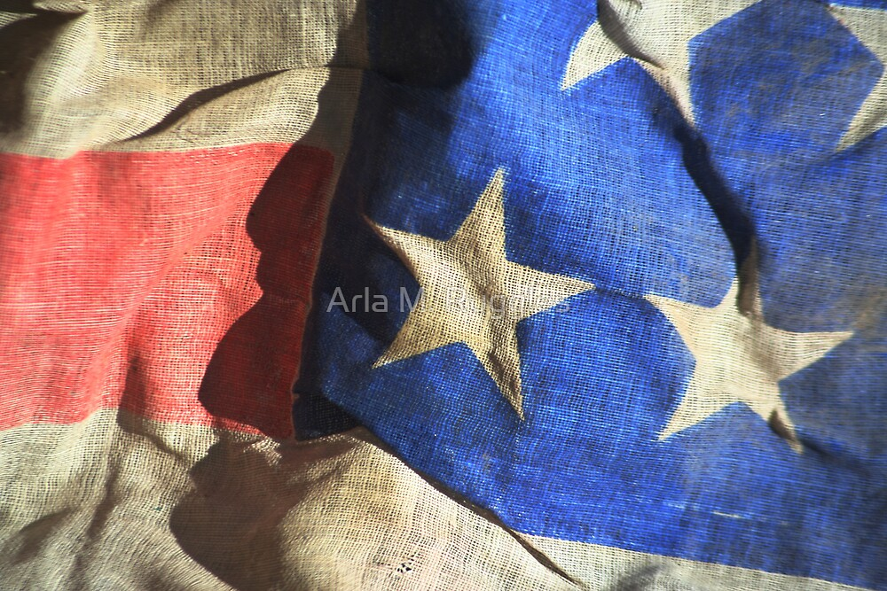 Profile In Patriotism by Arla M. Ruggles