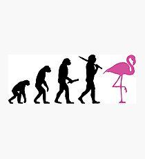 Evolution of flamingo Photographic Print