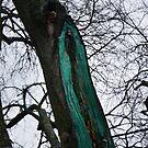 Gemalter Baum von claraphies
