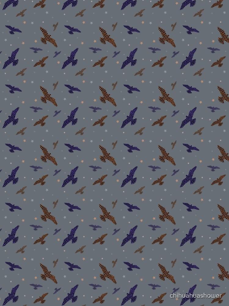 Falcon by chihuahuashower