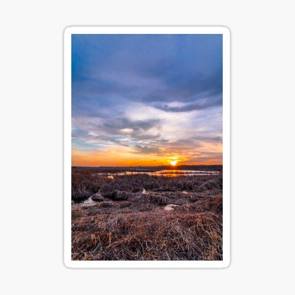Sunset at Liberty Loop marsh, portrait Sticker