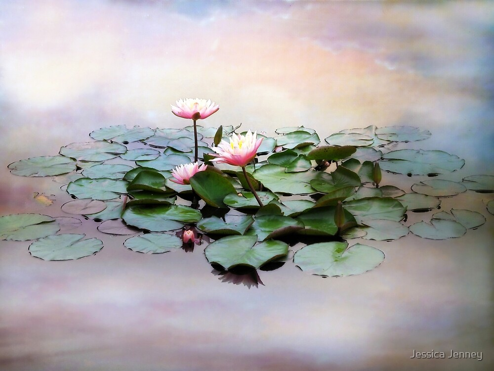 Monet Lilies by Jessica Jenney