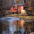 Bartram's Covered Bridge, Chester County, Pennsylvania by Polly Peacock