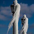 «señoras lámpara de hielo» de Perggals© - Stacey Turner