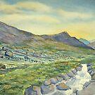 Raging Ghyll, Honister Pass by Glenn  Marshall