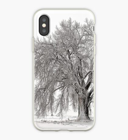 Frosted Cottonwoods iPhone Case