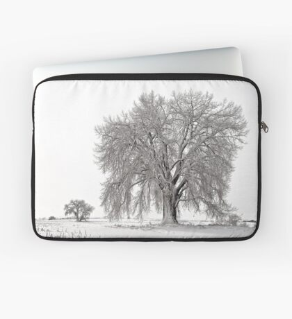 Frosted Cottonwoods Laptop Sleeve