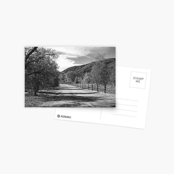The Forgotten Path Postcard