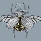 Mechanical Beetle by Chris Jackson