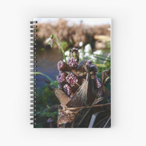 Common Butterbur (Petasites Hybridus) Spiral Notebook
