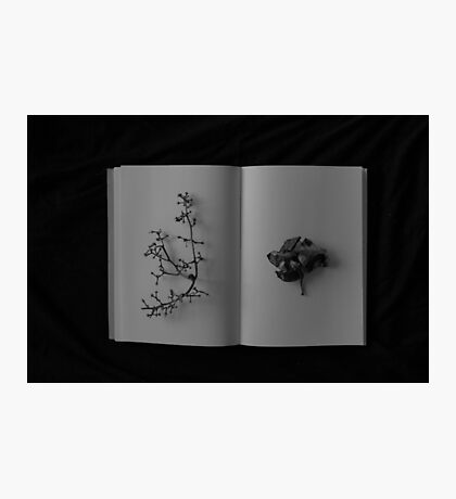 book of shadow Photographic Print