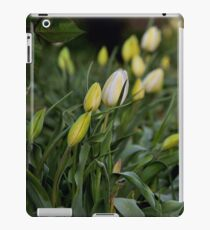 Tulipe iPad Case/Skin