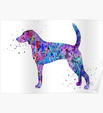 American foxhound, American foxhound watercolor, American foxhound dog Poster