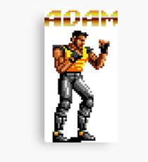 Adam Hunter from Streets of Rage Canvas Print