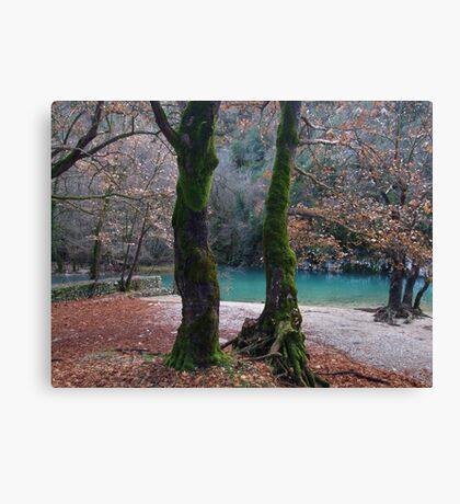 Like in a fairy tale  Canvas Print