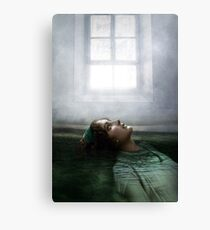 Last night in my dreams Canvas Print