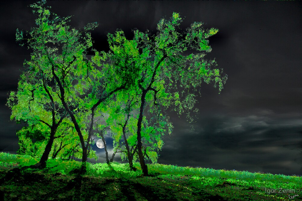 Green Moon by Igor Zenin
